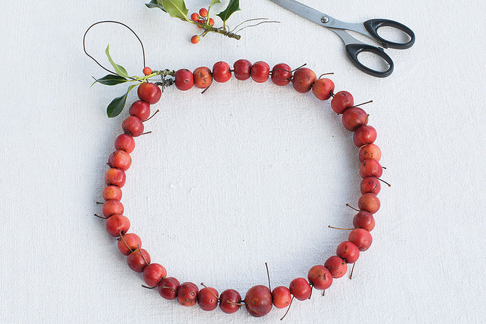 Make a crab apple wreath: the finished product, laid next to some tools and a sprig of holly.
