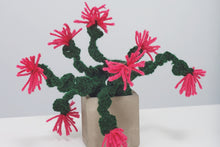 Load image into Gallery viewer, Crochet a cactus