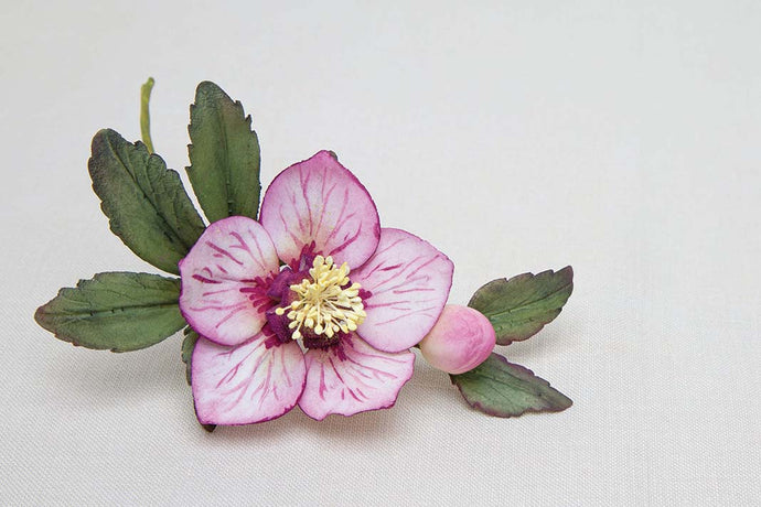 Make a sugarcraft hellebore