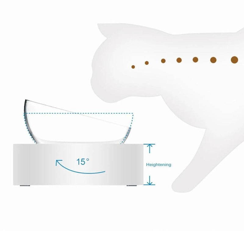 Healthy Bowl - Anti-Vomiting Tilted Elevated Pet Bowl Set