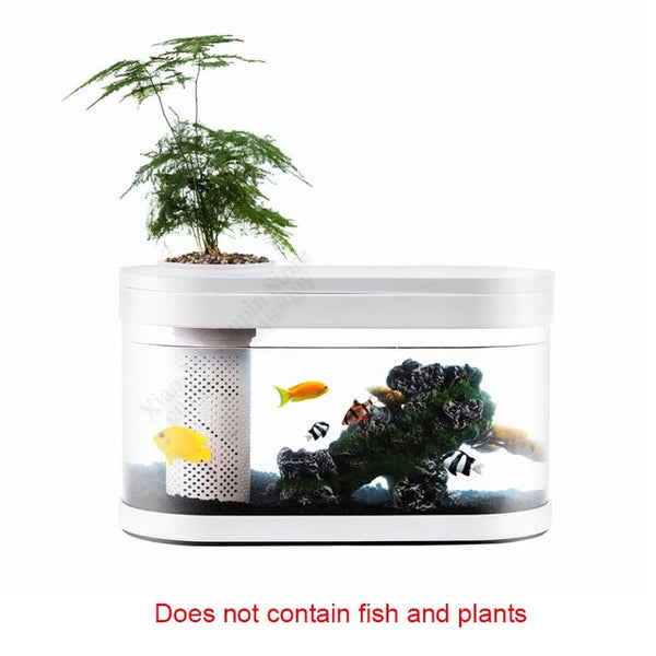 Small Water Garden Ecological Fish Aquarium