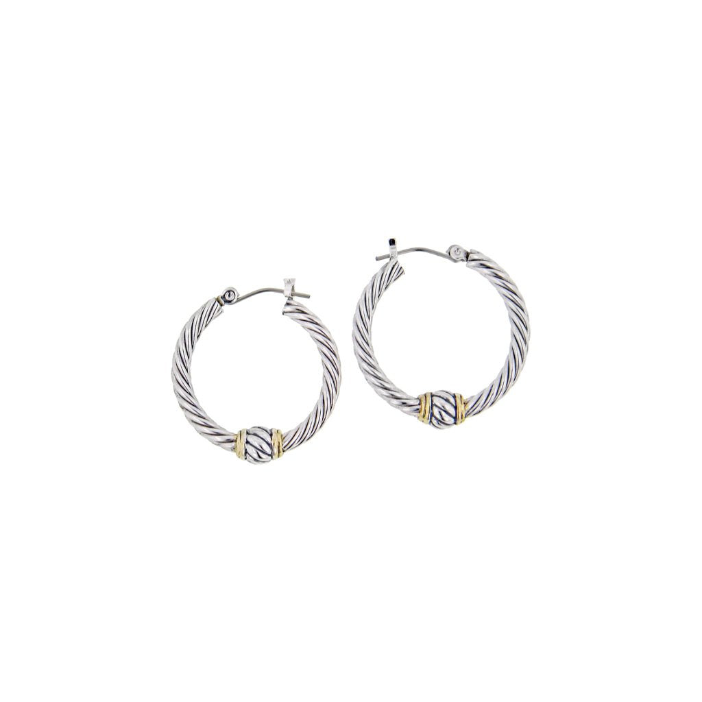 Oval Link Collection Small Twisted Wire Hoop Earrings
