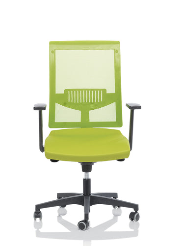 Joes Chair -Synchron Ergonomic Managerial Chair.