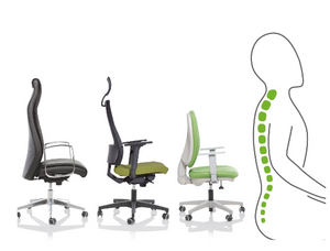 Circular Ergonomic Collection - 14 Lines - start collecting today !