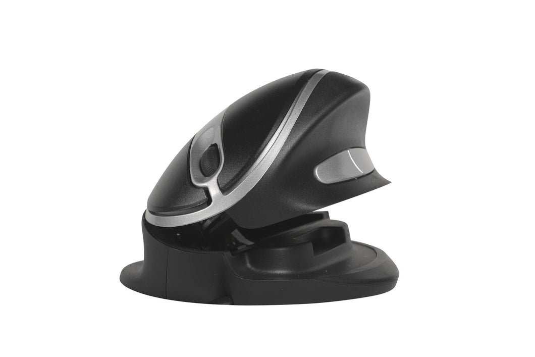 Ergonomic -Oyster Mouse Wireless. L&R
