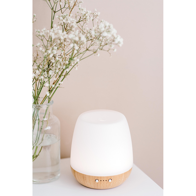 Bliss Diffuser & Holistic Health Collection