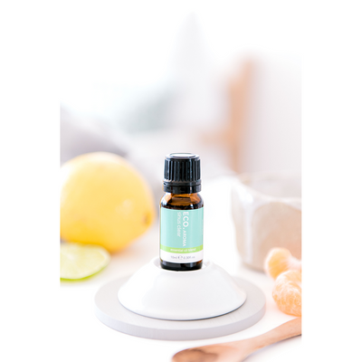 Banksia Pod Diffuser & Sinus Clear Essential Oil Blend Collection