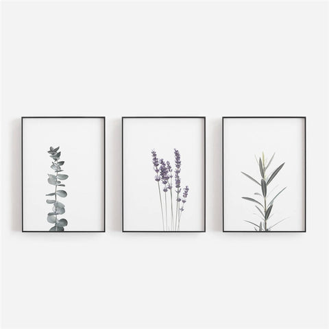 Lavender Watercolour Canvas - fenston-white