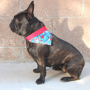 Fourth of July Dog Bandanas - Red White & Blue Stars & Fireworks