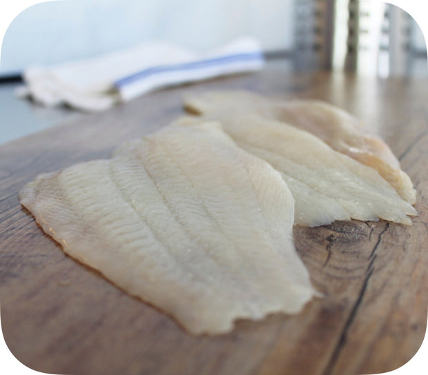 Fresh- Black Back Flounder Fillet
