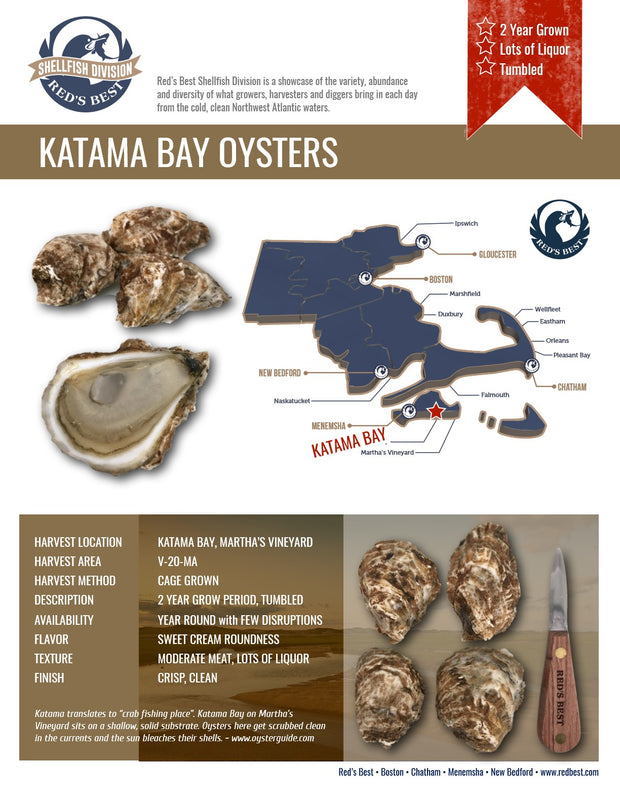 Fresh- Katama Bay Oysters 20ct Bag