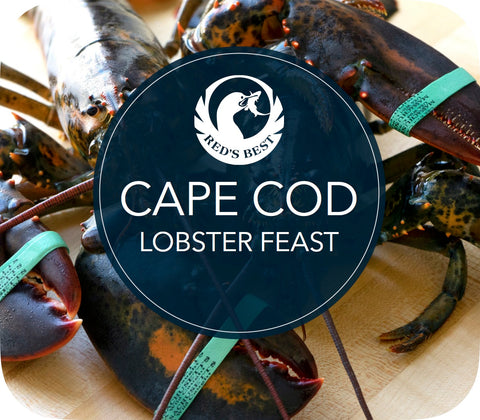 Cape Cod Lobster Feast