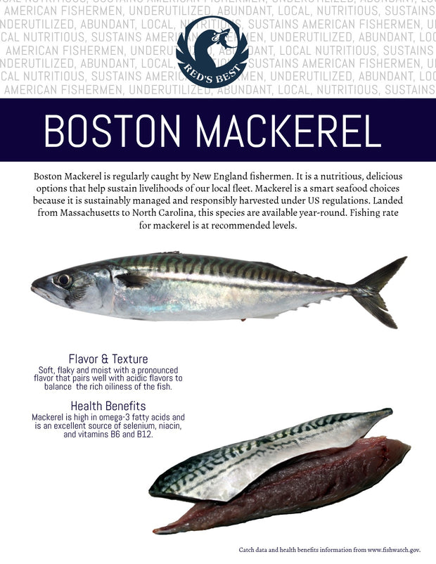 Fresh- WHOLE Boston Mackerel 2lb