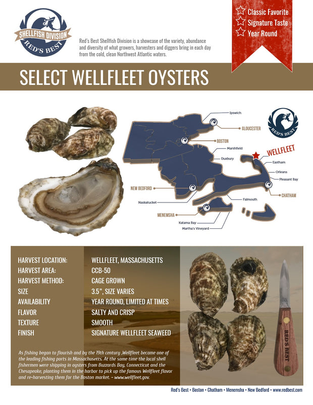Fresh- Select Wellfleet Oysters 20ct Bag