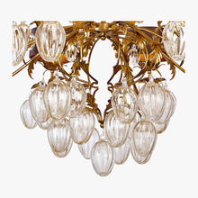 Load image into Gallery viewer, Ancona Chandelier
