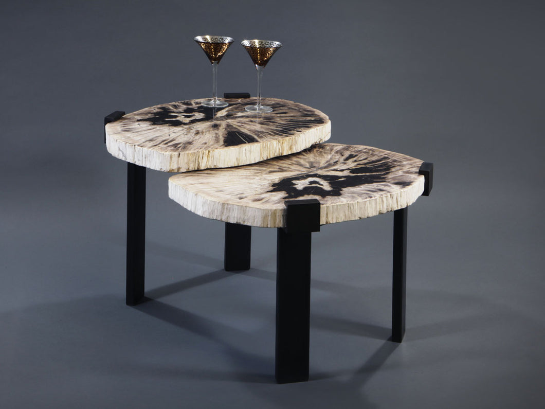 2 Tier Petrified Wood Table