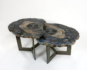 Nested Petrified Wood with Hammered Tri-Foil Base