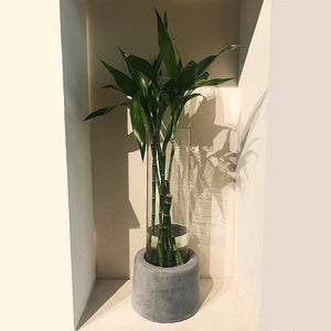 concrete handmade big floor planter grey