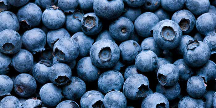 9 foods to boost your brainpower