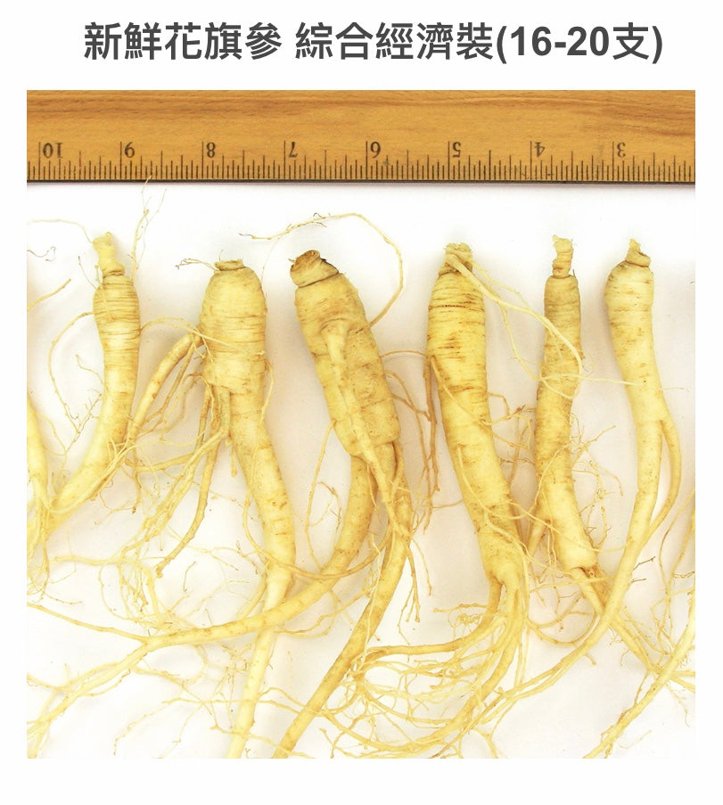 新鮮花旗參-綜合經濟裝號Fresh Am. Ginseng Ungraded Mixed/8oz(16-20支)$45/2包