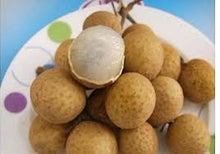 Load image into Gallery viewer, GS124-5 有機龍眼(桂圓/圓肉)Organic Dried Longan Meat 5oz