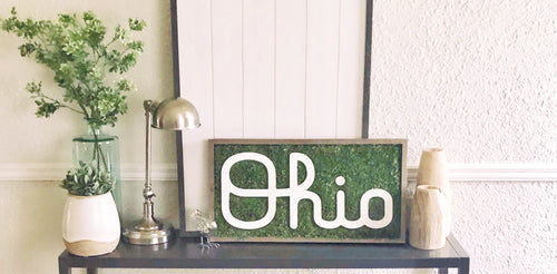 Cursive Ohio Spotlight Sign  -  10