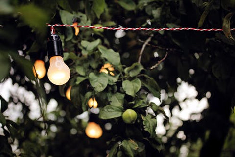 garden string lighting