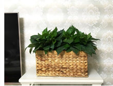 woven basket for plants