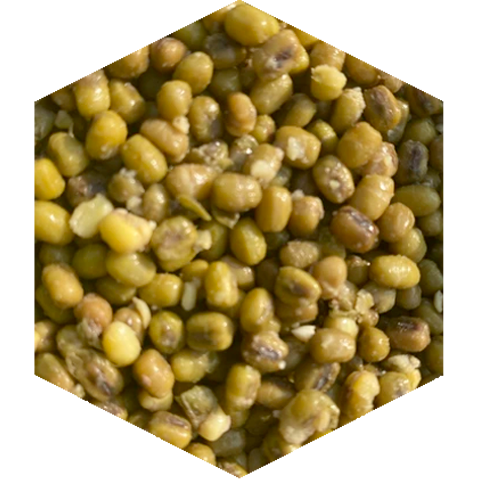 Munga Beans -Fresh Or Shelf Life Particle