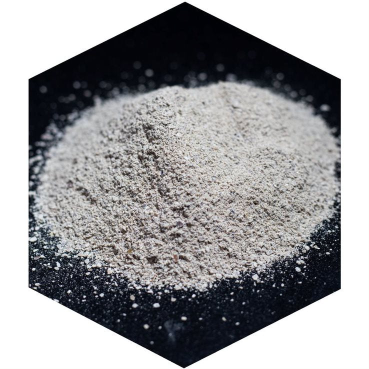 Powdered Snail Shell | Natural Particle