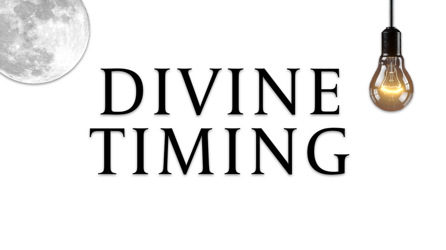 "DIVINE TIMING - ""THE PERSON THAT BROKE YOUR HEART"" ALL ZODAIC TAROT READING"