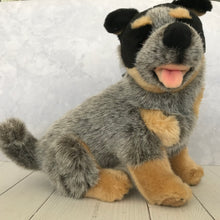 Load image into Gallery viewer, Sitting Blue Heeler