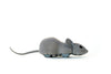 Image of Mouse Hunt Cat Toy