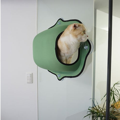 Coolest Cat Bed