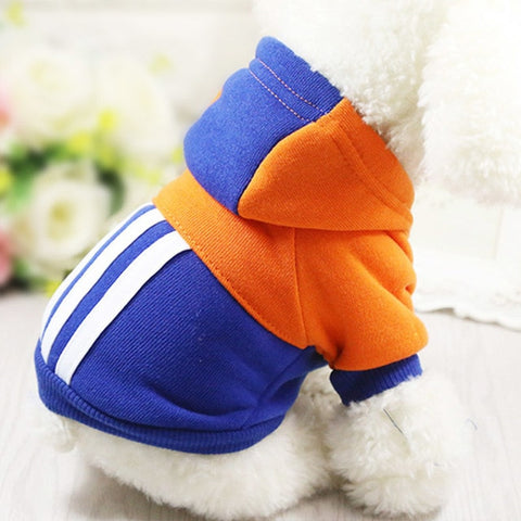Stylish Outfits for Small Dogs