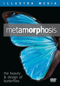 Metamorphosis: The Beauty and Design of Butterflies DVD image