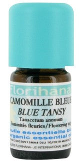 Blue Chamomile essential oil image