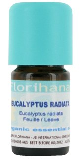Eucalyptus Radiata essential oil image