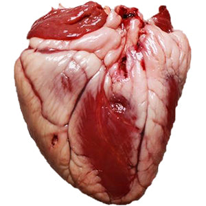 Grass-fed Lamb Heart - approx. 8 oz. package (8 pkg minimum)