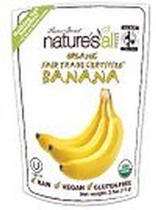 Organic Raw Freeze Dried Banana - 2.5 oz - HBC