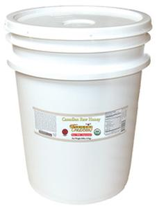 Raw Wild Canadian Honey - 60 lb. Pail - HBC