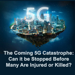 The Coming 5G Catastrophe: Can it be Stopped Before Many Are Injured or Killed? eBook