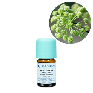 Angelica Root Essential Oil – 5g
