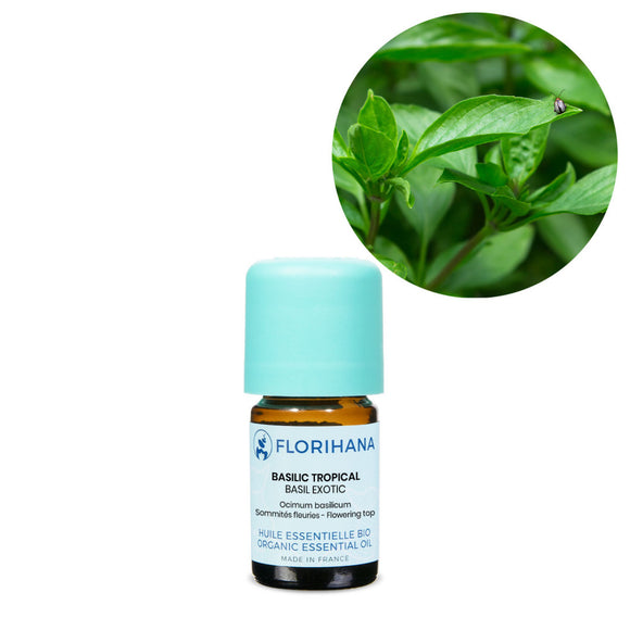 Basil Exotic Essential Oil – 5g