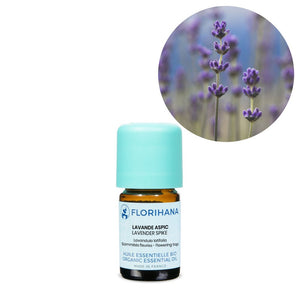 Lavender Spike Essential Oil - 5g