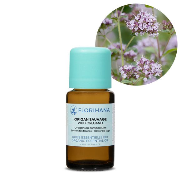 Oregano Wild Essential Oil - 15g