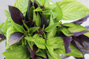 Basil, Smokin' Hot Mix