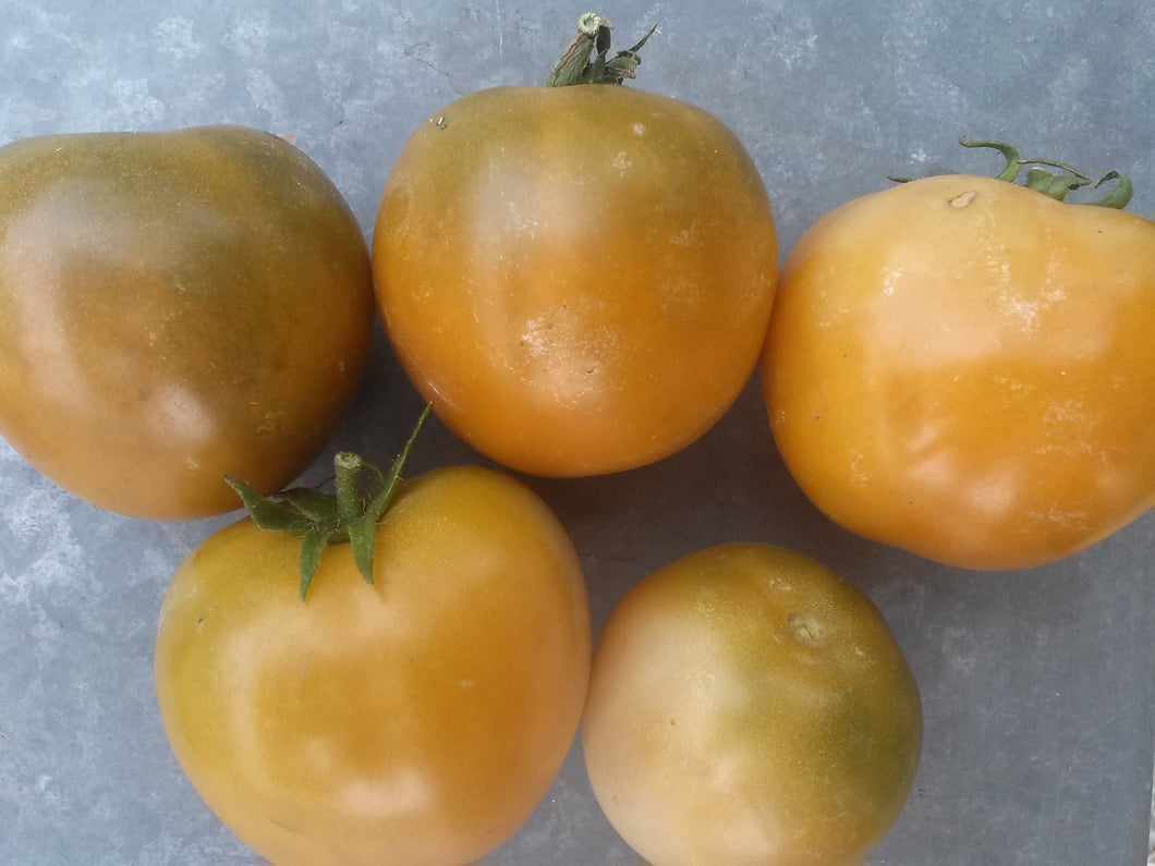 Tomato, Orange is the New Black Krim