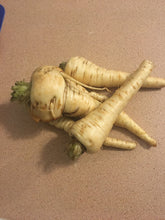 Load image into Gallery viewer, Parsnip