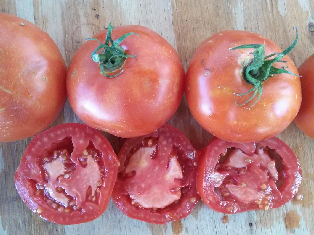 Tomato, Boxcar Willie
